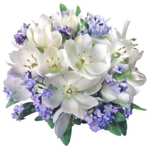 flower3975